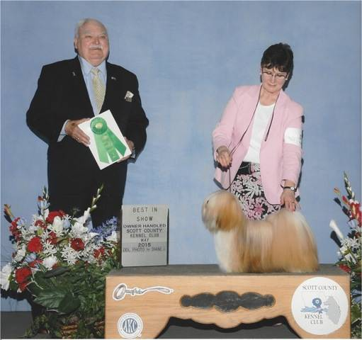 dog show photo with dog handler judge